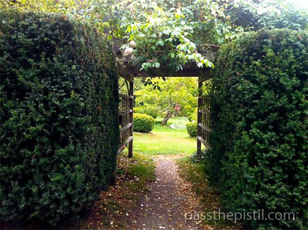 Green Gulch Garden