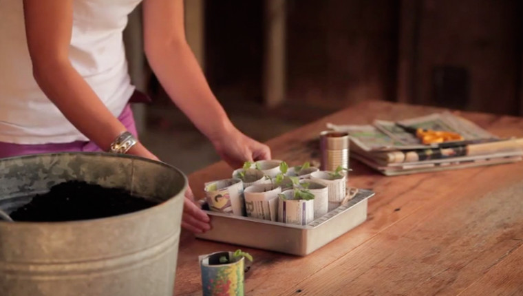 Making Paper Pots