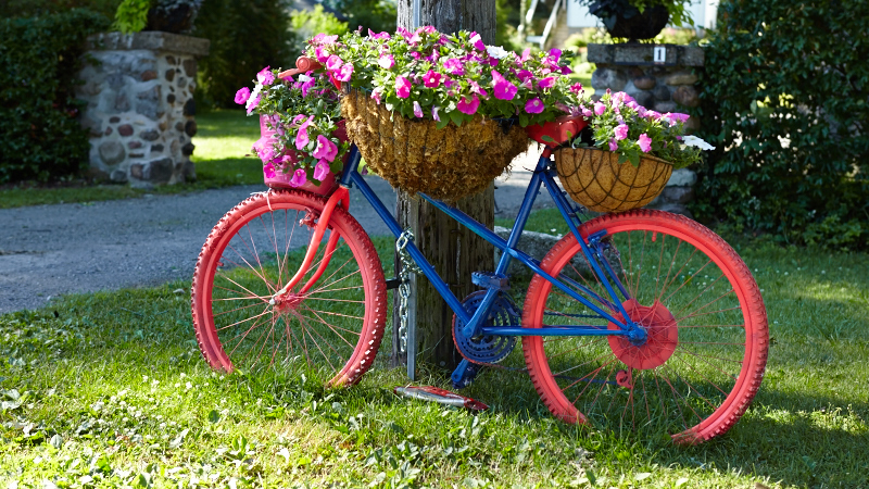 Growing flowers with spin upcycled bicycle gardens for Decoration jardin velo