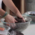 Make Your Own Seed Starting Mix | DIY Gardening