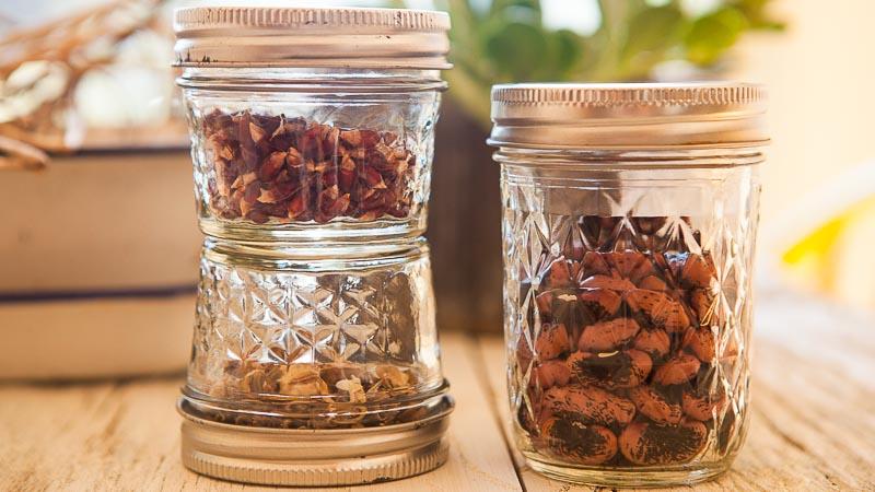 Seed Saving Made Simple