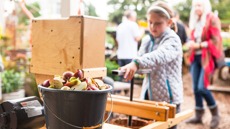 Cider Pressing with City Fruit