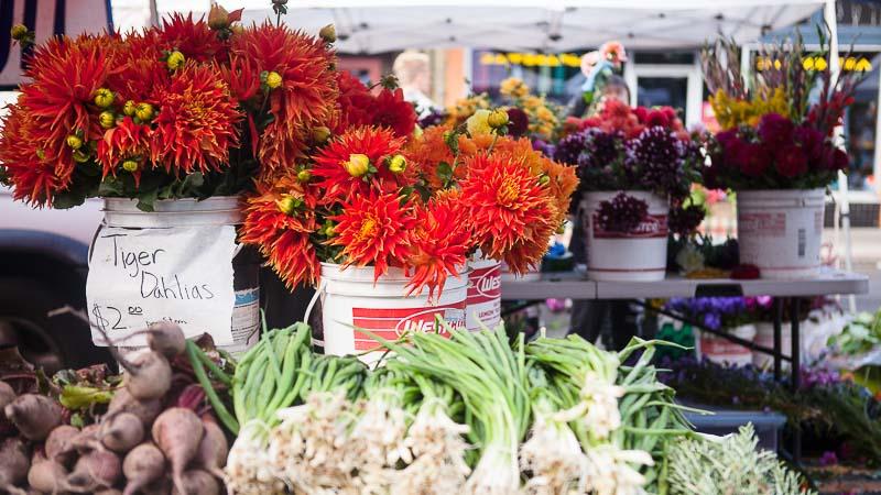 Flower Revival: West Seattle Farmer's Market. Emily Murphy & Pass the Pistil.