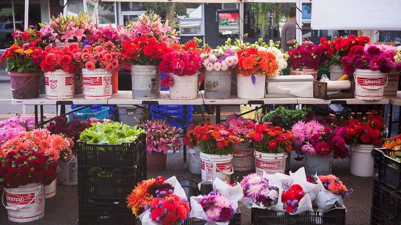 Flower Revival: West Seattle Farmer's Market. Pass the Pistil & Emily Murphy.