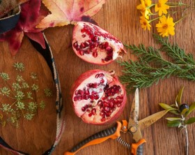 Fall Forage: Cooking with Pomegranates