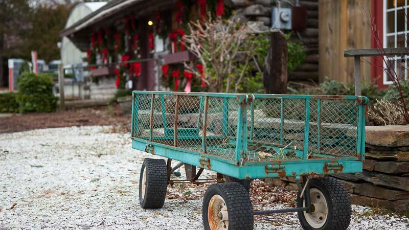 A Local Nursery: Shelburne Vermont