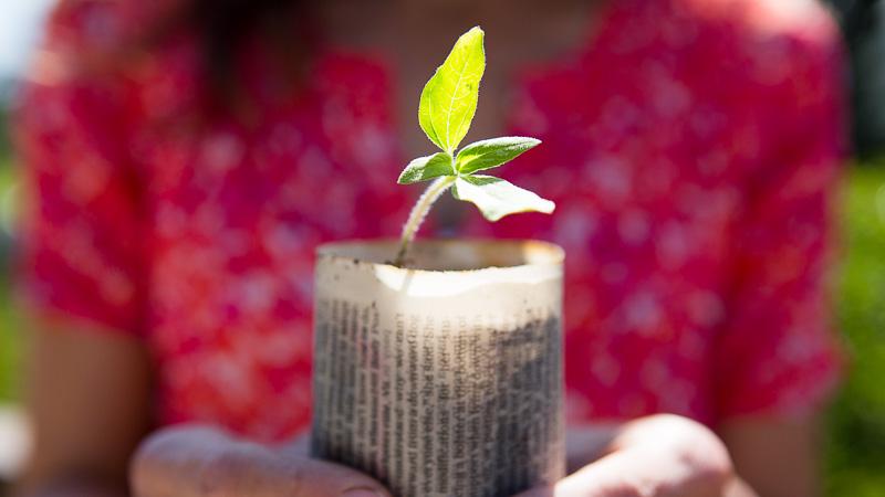Finding New Life Through Gardening