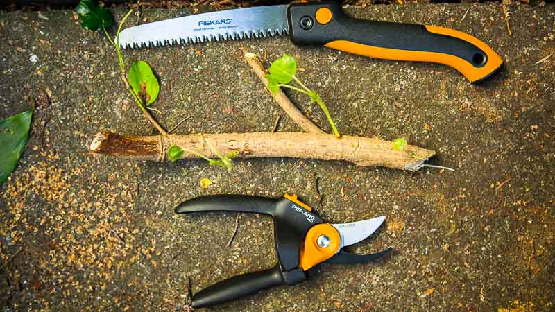 Pruning 101: What to Prune When