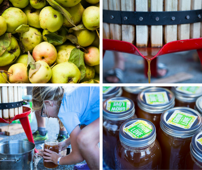 Community Squeeze: 5 Takeaways from Gleaning & Food Making